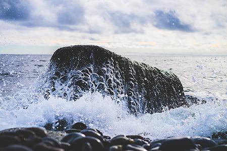 ροκ, νερό, στη θάλασσα, Ωκεανός, κύμα, υγρό, δύναμη