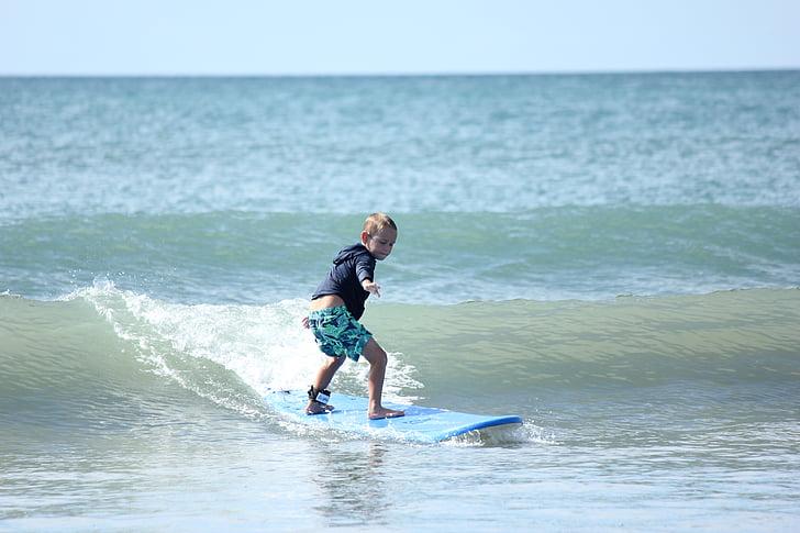 navegar per, platja, l'estiu, esport, vacances, peluda, surf