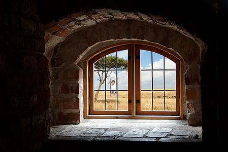 vinduet, fordypningen, skyer, landskapet, resesjon, arkitektur, huset