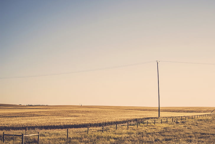 rural, fields, grass, power lines, sky, sunset, no people