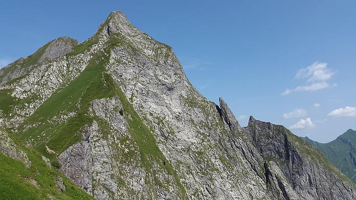 höfats, Allgäu, Grasberg, крутая трава, Альгойские Альпы, Альпийский, пейзаж