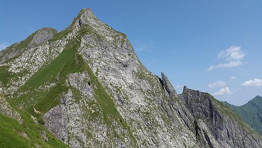 höfats, Allgäu, Grasberg, bratt gress, Allgäu-Alpene, alpint, landskapet