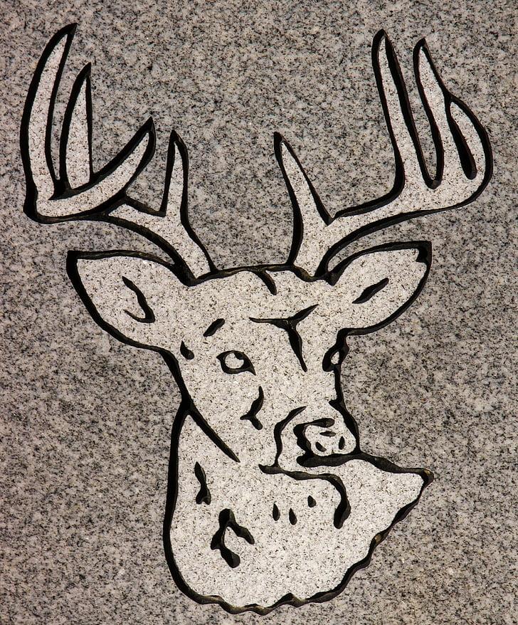talla, animal, làpida, símbol, detall, granit, tomba