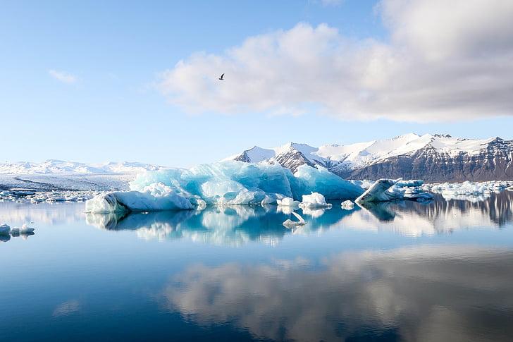 mar, oceano, água, ondas, natureza, gelo, iceberg