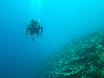ronjenje, Maldivi, more, oceana, ronilačkom odijelu, Dubinsko ronjenje, pod vodom