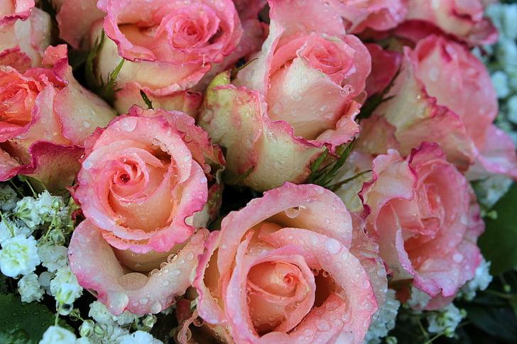 roosid, roosa lill, kimp, roosa, aroom, romantiline, Emadepäev