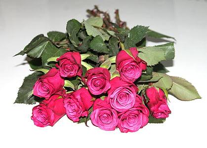 moltes roses, Roses, RAM, flors, Romanç, vermell, flor