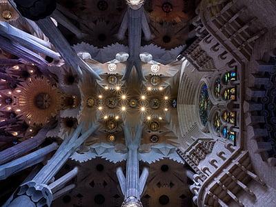 ceiling, cathedral, sagrada família, barcelona, catalonia, inside, church