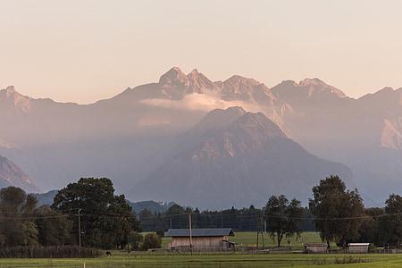 гори, Альпійська, гірський ландшафт, Луговий, Пасовище, полонину, abendstimmung