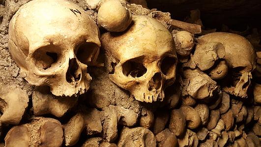 catacombs, paris, skulls, bones, cemetery, halloween, scary
