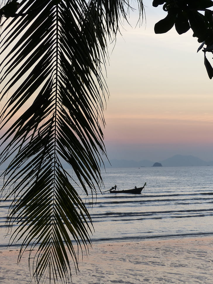 palmtak, zonsondergang, Ao nang beach, Krabi, Thailand