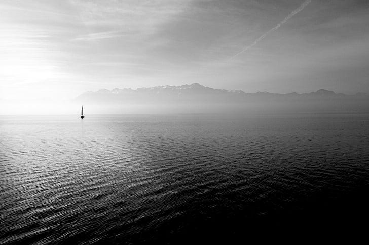 sailing boat, ocean, open water, sea, boat, sail, water