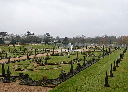 jardí, formal, ornamentals, botànic, decoratius, disseny, plantes