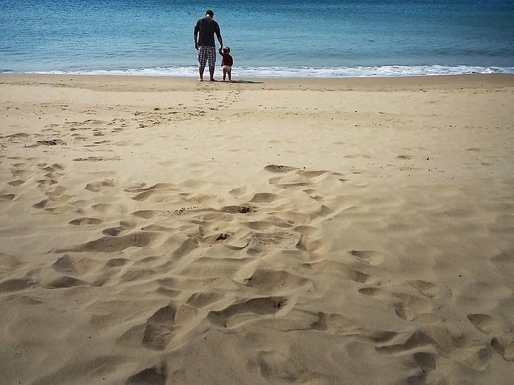 cha, con trai, Bãi biển, phong cách sống, mối quan hệ, cùng nhau, đi bộ