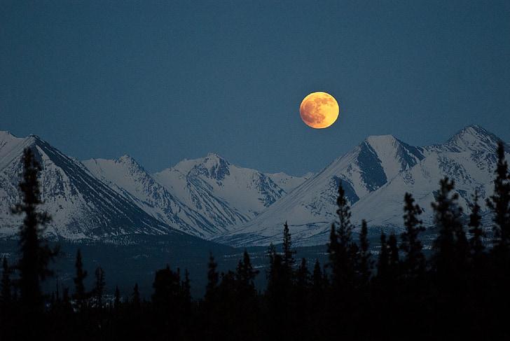 muntanyes, nit, Lluna plena, paisatge, cel, neu, arbres