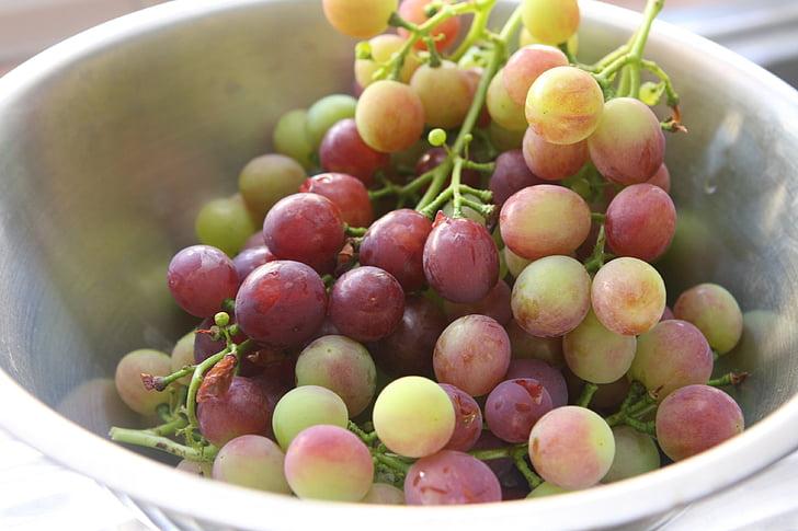 raïm, fruita, Fruitera
