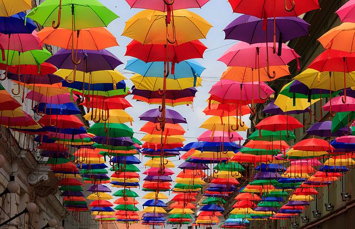чадър, цветни, многоцветно, чадъри, много цветни