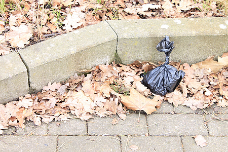 sanitary bags, plastic bag, kot bag, plastic, garbage, pollution
