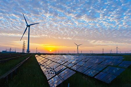 electricitat, sol, vent, forces de la natura, recursos, l'energia solar, turbina