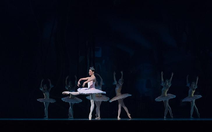 Ballet, performances, Don Quichotte, ballerine, danseuse, femme, mâle