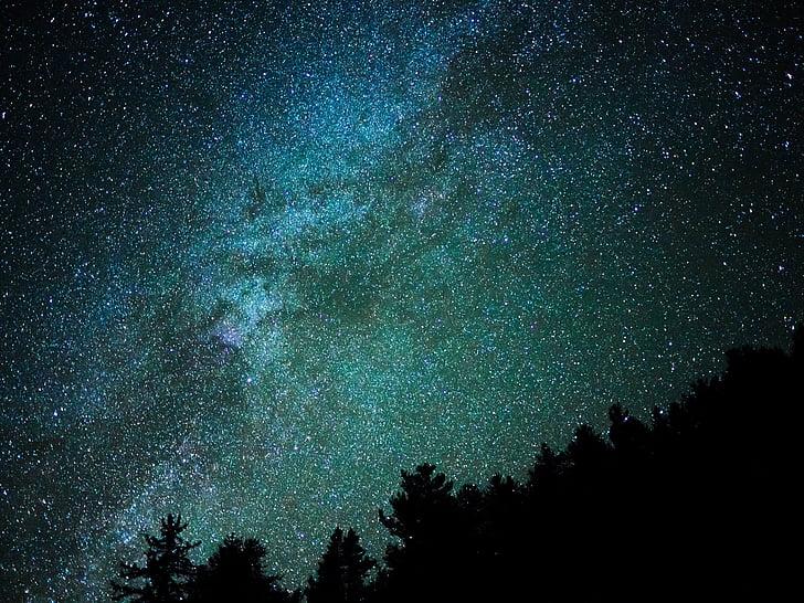 Milkyway, fotos, natura, arbres, galàxies, estrelles, cel