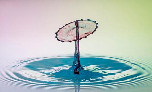 vatten, DROPP, droppe vatten, vätska, hochspringender hög drop, våt, makro
