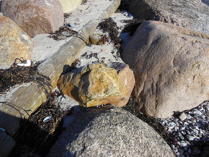 platja, pedra, granit, sílex, sílex marró, pal de fusta, close-up