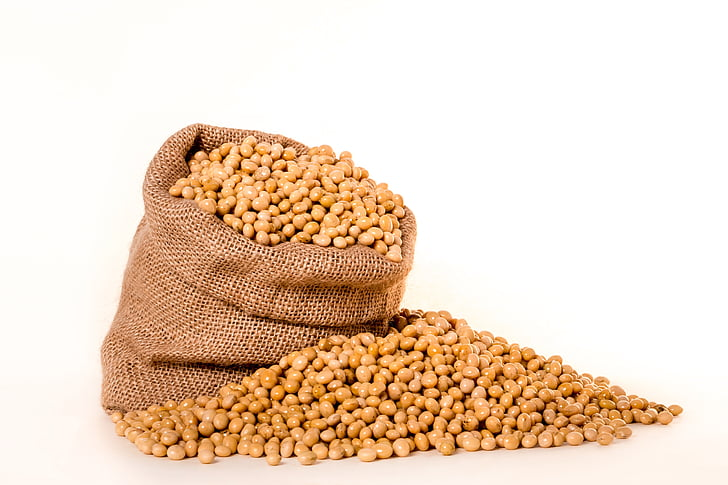 soybeans, plants, seeds, bag, burlap, grain, oil