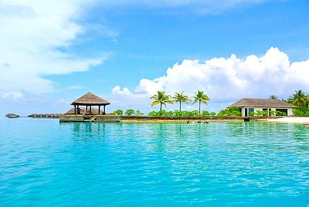 Maldivi, kokosovo stablo, more, naselje, ljeto, odmor, nebo