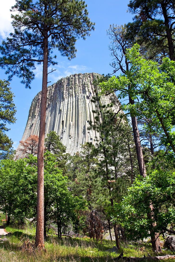 devils tower, wyoming, monument, national, devils, stone, monolith