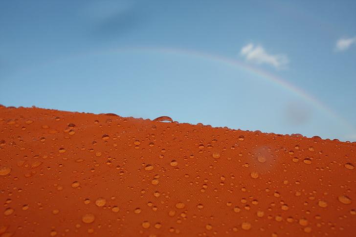 narančasta, pad, duga, vode, kiša, sunčan dan, krupne
