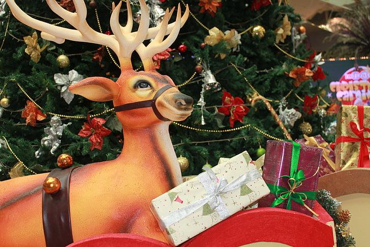 põhjapõder, jõulud, teenetemärgi, puu, kingitused, Xmas