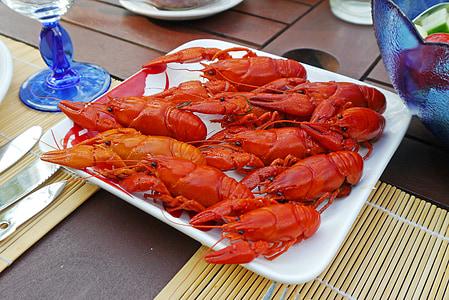 vēža pārtikas, krabji, ēst, sarkana, ēst krabji, vasarā tiesa, Starter