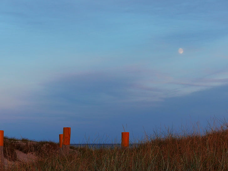 baltic sea, beach relax, light, mood, relaxation, rest, balance