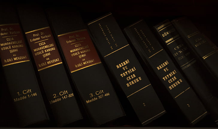 justice, law, case, hearing, old, skin, book