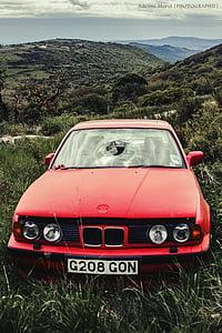 車, フロント ガラス, 壊れた, 壊した, 破壊, 赤, 放棄