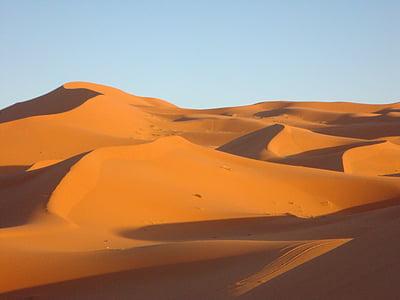 poušť, Duna, písek, Sahara, vyprahlé, Divočina, Maroko