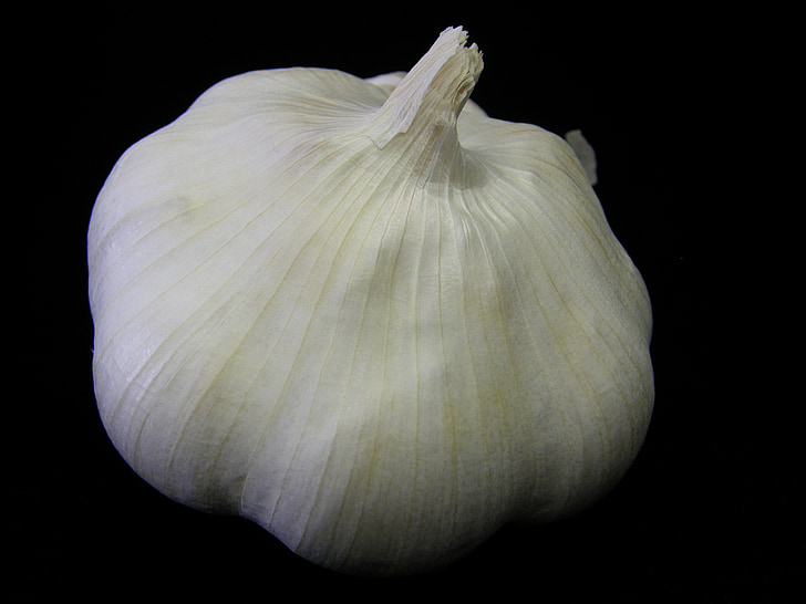 garlic, plant, bulb, vegetable, herb, aromatic, eating