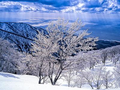 paisagem, geada, montanhas, mar, Shirakami-sanchi, 3 meses, Mar do Japão