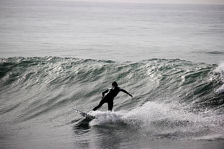 grosse vague, humaine, homme, mer, sport, planche de surf, surfeur