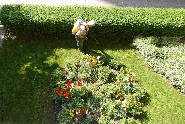 zahradník, zahrada, zahradnictví
