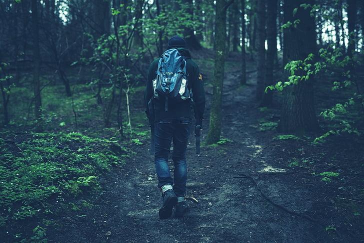 man, walking, inside, woods, people, fitness, hiking