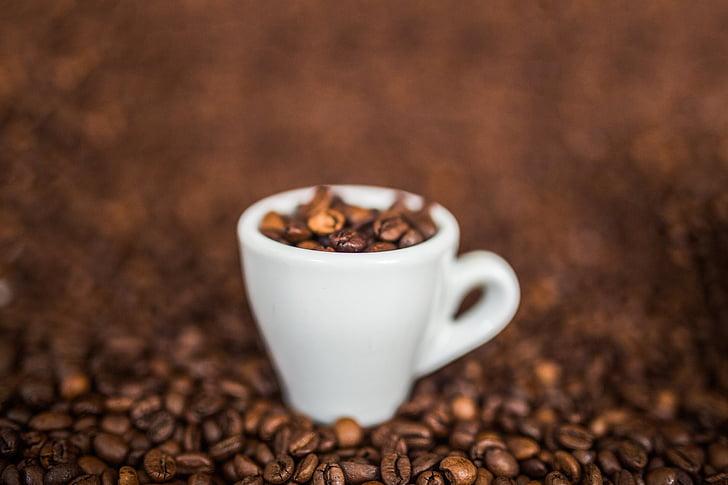 cafè, fesols, grans de cafè, cafè exprés, Copa, cafeteria, cafè - beguda