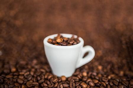 koffie, bonen, koffiebonen, Espresso, Beker, Café, koffie - drinken