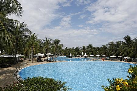 Güneş spa resort, Yüzme Havuzu, Vietnam, manzara, palmiye ağacı, ağaç, turist resort