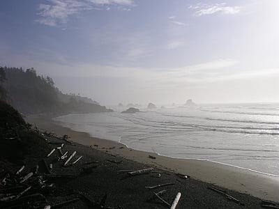 oceà, Oregon, del Pacífic, Costa, ones, Costa, paisatge