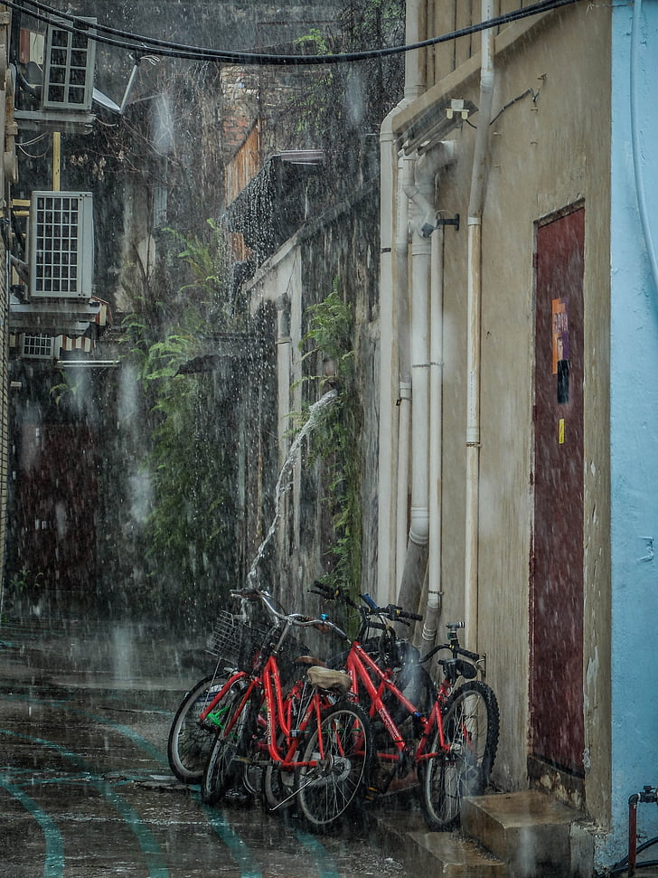pluja, bicicletes, plovent, mullat, temps