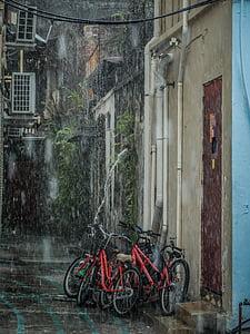 rain, bicycle, raining, wet, weather