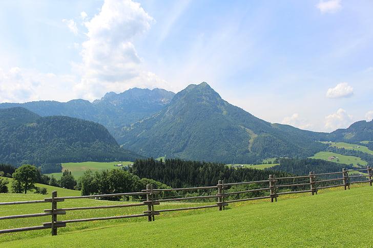 muntanyes, alpí, les pastures, pastius, tanca, Àustria, Salzburg