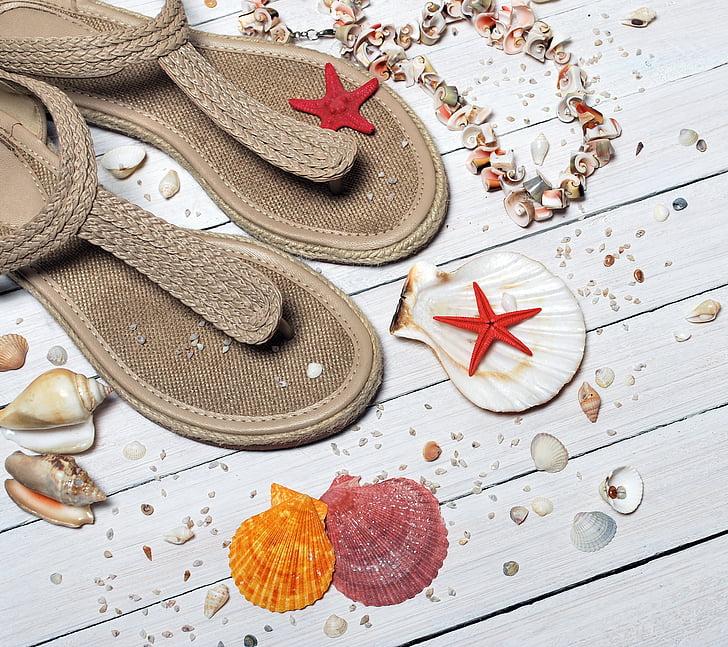 sandaler, Seashells, sjøen, ferie, sand, stranden, Sommer